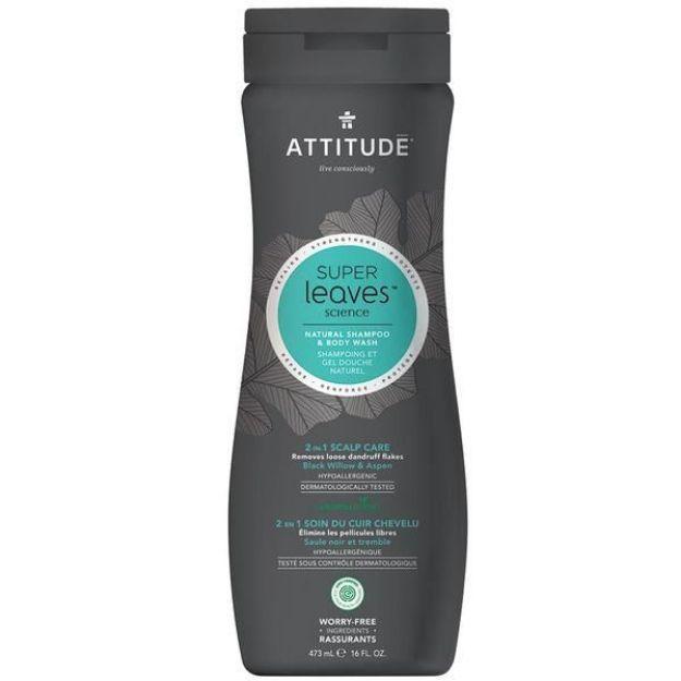 Shampoo & Body Wash - Men's 2-in-1 Scalp Care (16 fl. oz., Attitude)